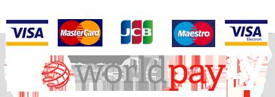wordplay logo, visa, mastercard, JCB, maestro, visa electron